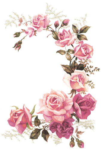 XL PinK TeA RoSe CoRNeR SWaGs ShaBby DeCALs ~FuRNiTuRe SiZe~
